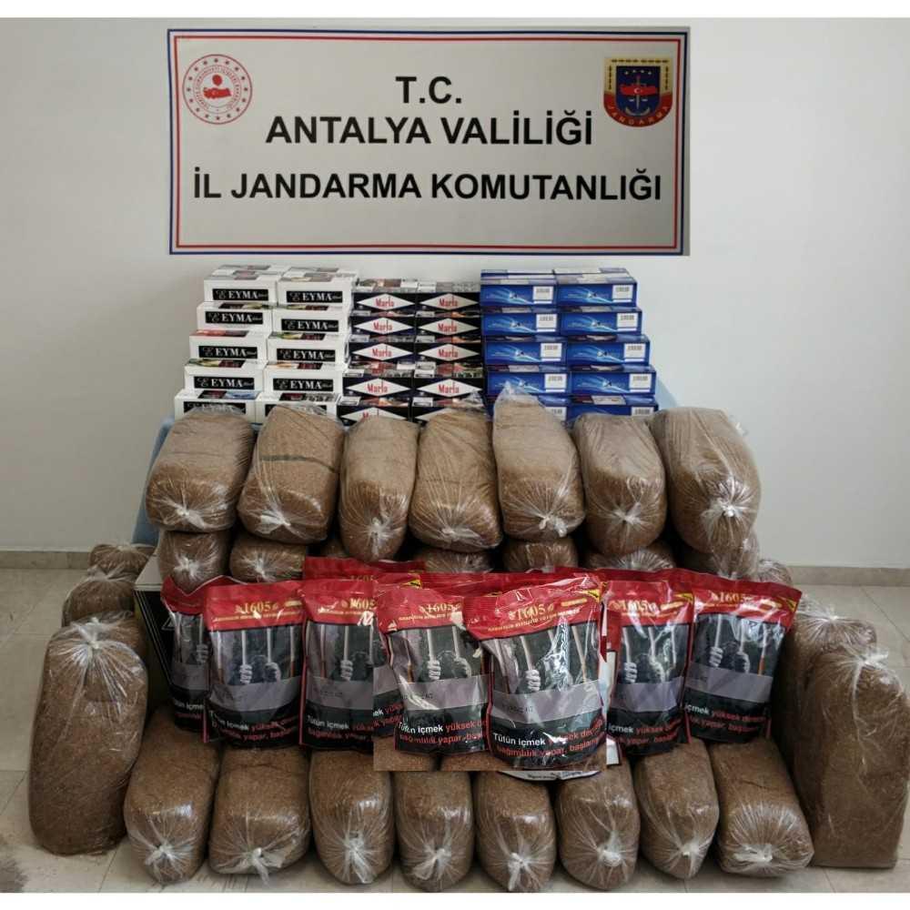 Antalya'da 50 bin kaçak makaron ve 165 kilo tütün ele geçirildi