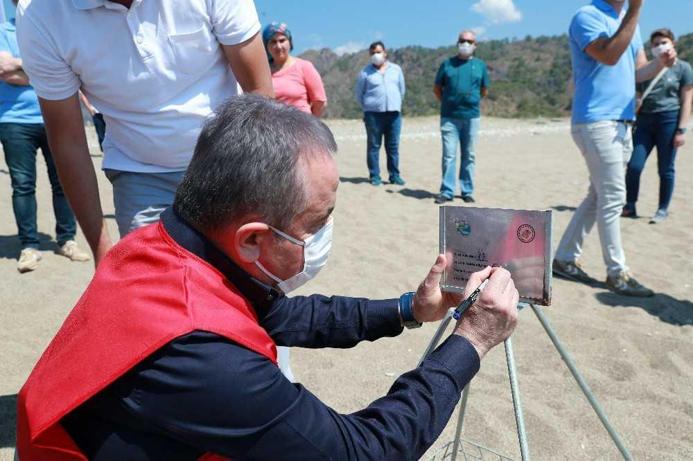 Başkan Böcek Dünya Çevre Günü'nde deniz kaplumbağalarının yuvalama alanını koruma altına aldı