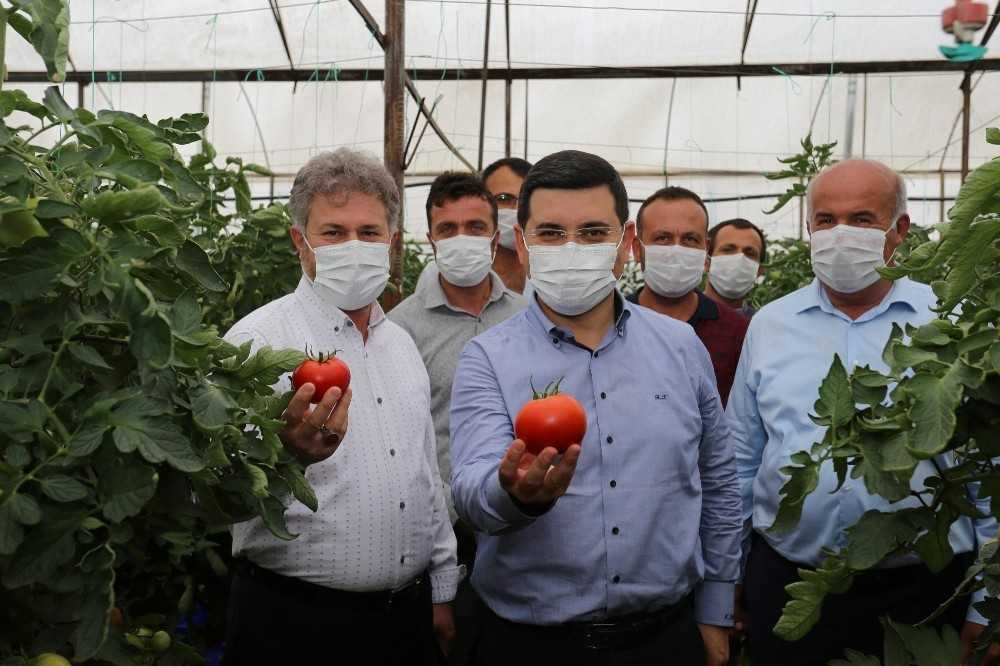 Başkan Tütüncü'den çiftçiye çifte müjde