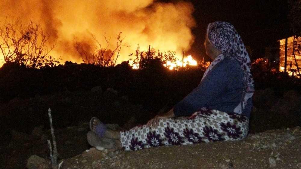 Budanmış kuru ağaç dallarının bulunduğu alanda çıkan yangın endişeye neden oldu