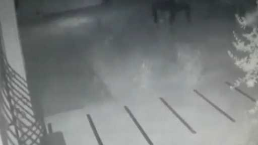 Acemi hırsızlar motosikleti çalabilmek için dakikalarca böyle uğraştılar