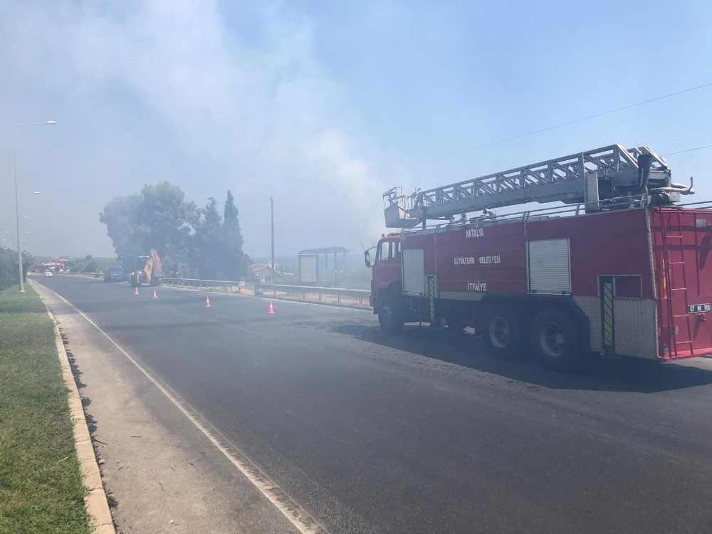 Alanya'da deniz kenarındaki sazlık alan yangını güçlükle kontrol altına alındı