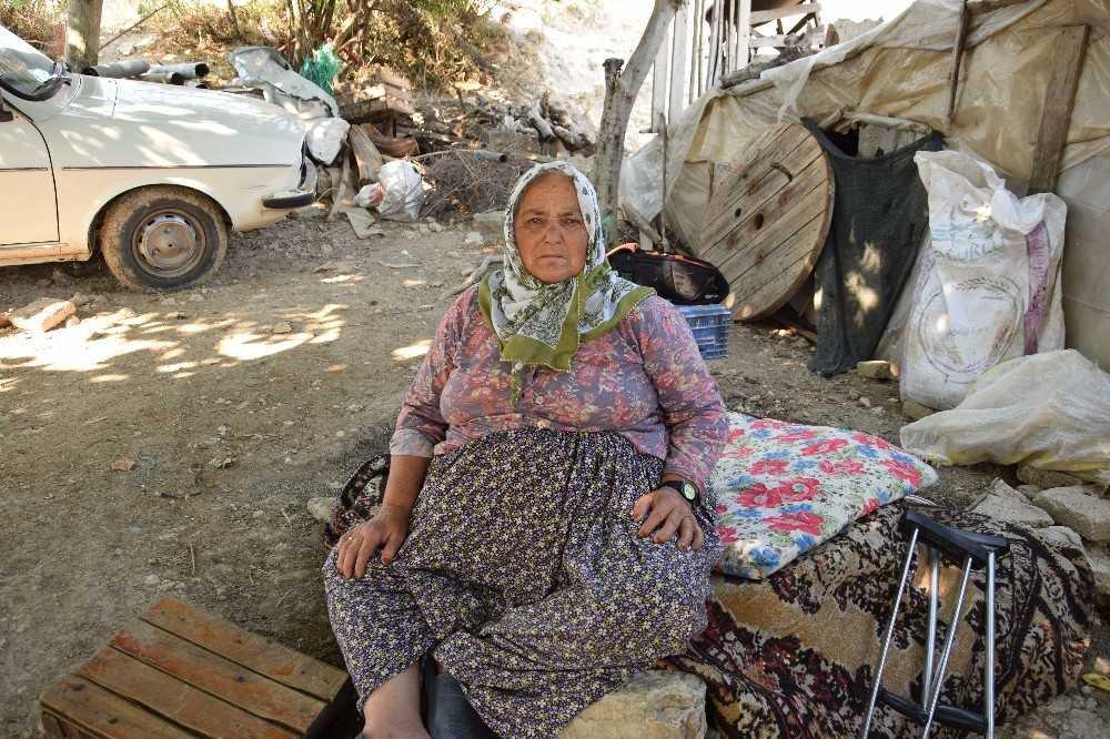 Antalya'da engelli kadının yanan evinden sadece köpeği kurtuldu