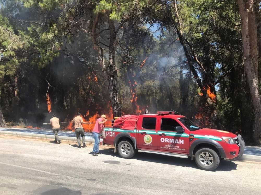 Araçtan atılan izmarit orman yangınına sebep oldu