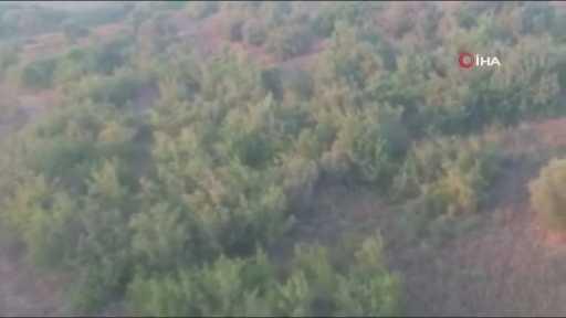 Kaybolan kurbanlık keçiyi drone ile buldular