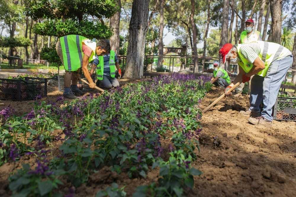 Kepez Belediyesi daha yeşil bir ilçe için çalışıyor