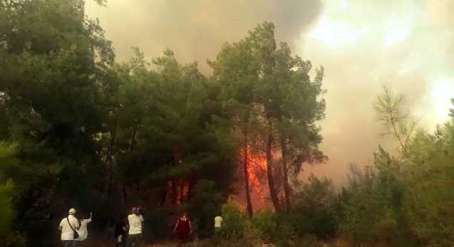 Antalya'daki orman yangını devam ediyor