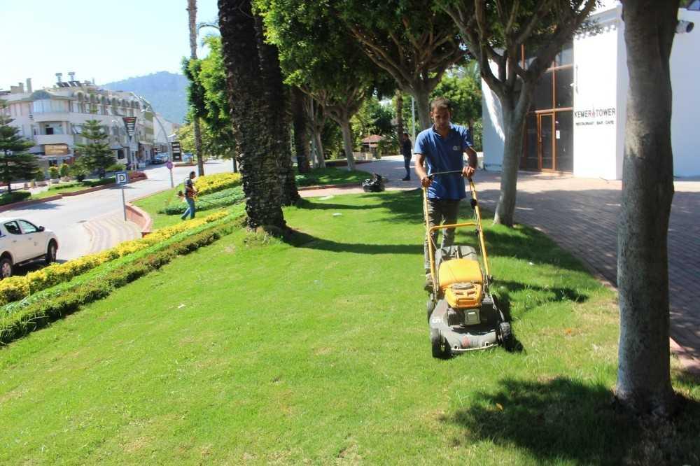 Büyükşehir, Kemer'de yeşil alanların bakımını yapıyor