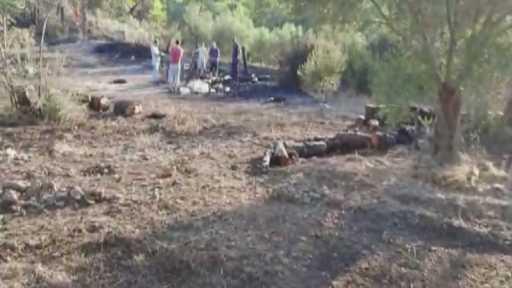 Manavgat'ta aynı saatlerde dört ayrı noktada orman yangını