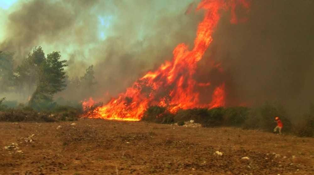 Orman yangınında çıkan hortumun arasında kalan ormancılar o anları anlattı