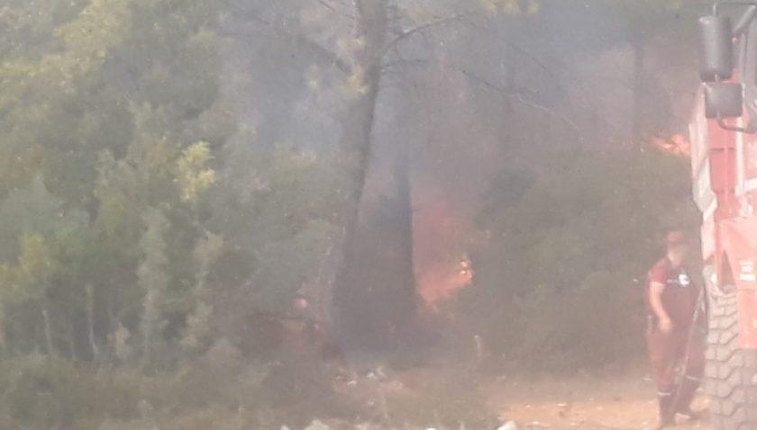 Serik'te orman yangınına 4 helikopter ve 30 arazöz müdahale ediyor