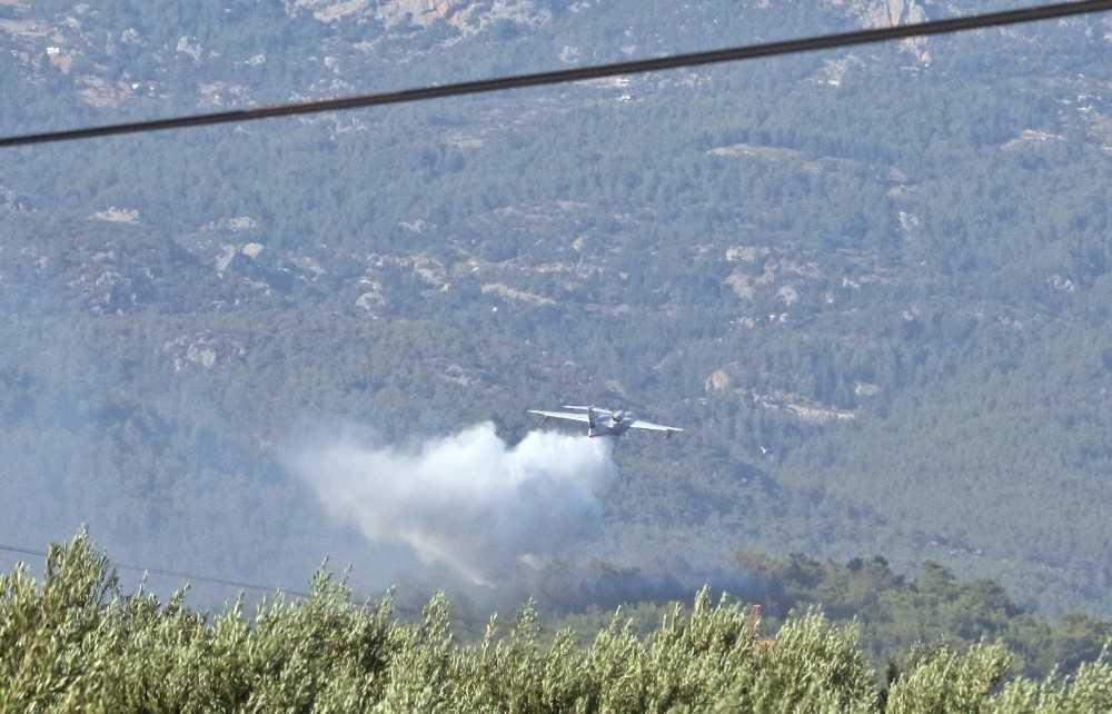Serik'teki orman yangını 4,5 saat sonra kontrol altına alındı