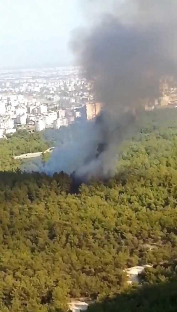 Antalya'da orman yangını büyümeden söndürüldü