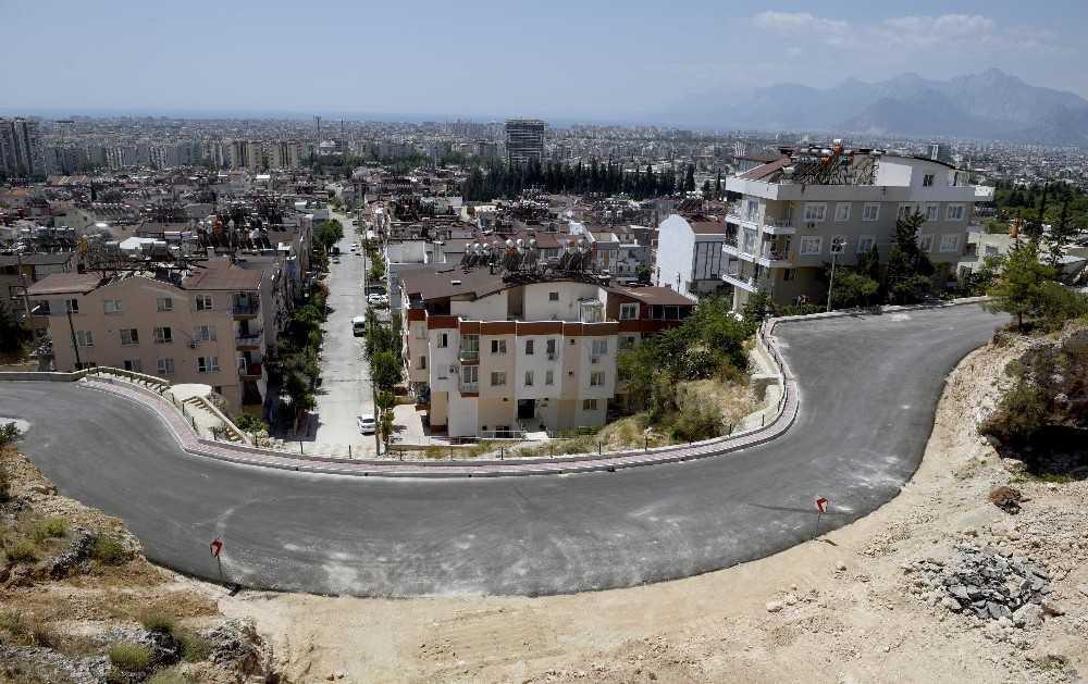 Barış Mahalles Akdeniz bitkileriyle süslenecek