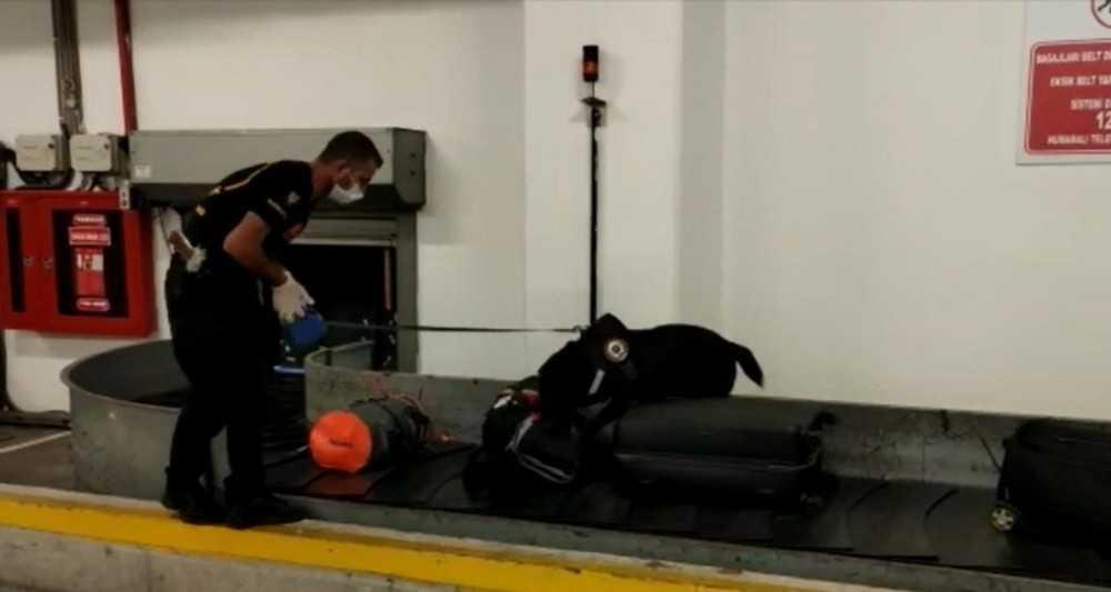 Havalimanında narkotik köpeğinin tepki verdiği valizden uyuşturucu çıktı