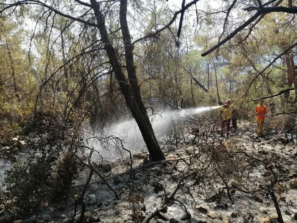 Tatil merkezi Adrasan'da 60 hektarlık ormanlık alan zarar gördü