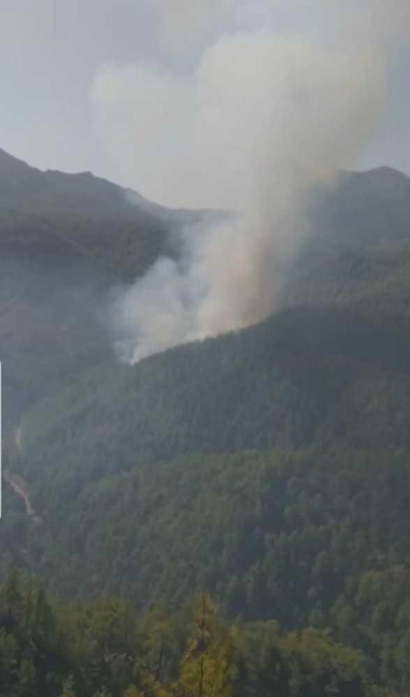 Gündoğmuş'taki yangın rüzgarın etkisiyle yayılıyor