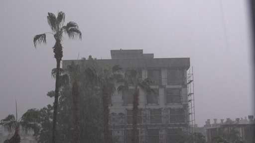 Kumluca'daki fırtına narenciye seralarını vurdu