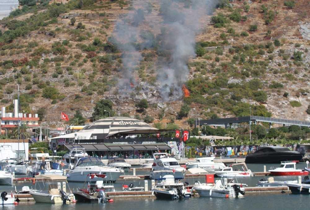 Marina karşısındaki yangın ormana sıçramadan söndürüldü
