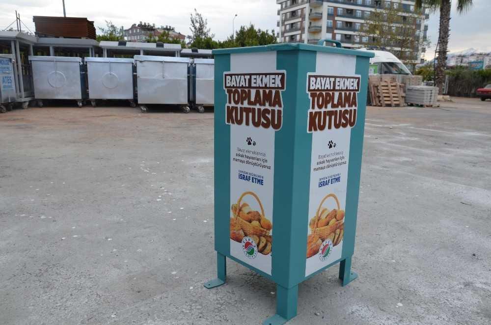 Kepez'de bayat ekmekler sokak hayvanlarına mama olacak