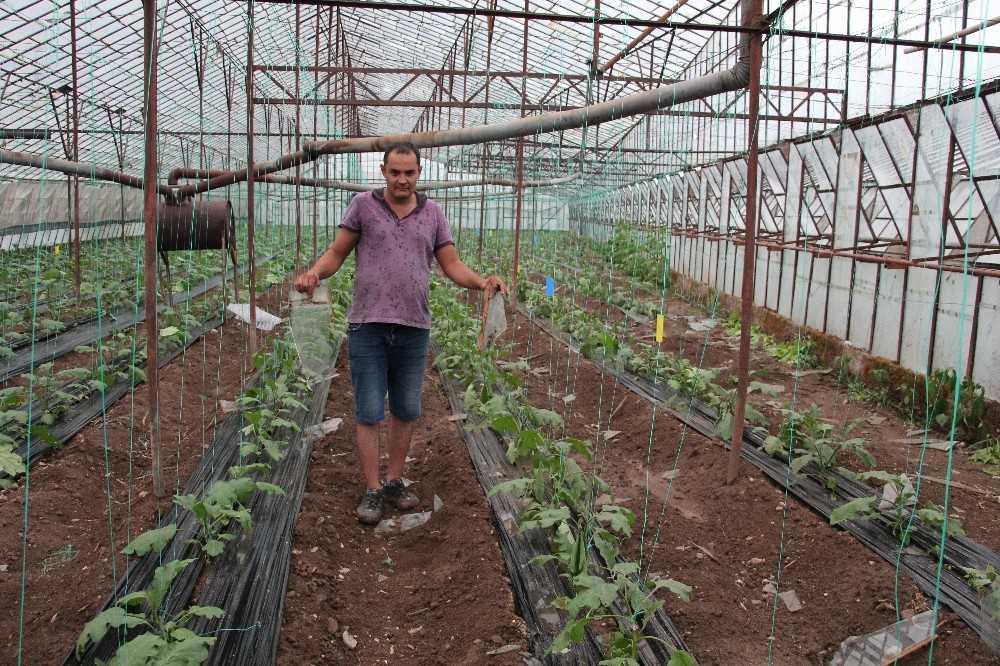 Kumluca'da fırtına sonrası arazi hasar tespiti çalışmaları tamamlandı