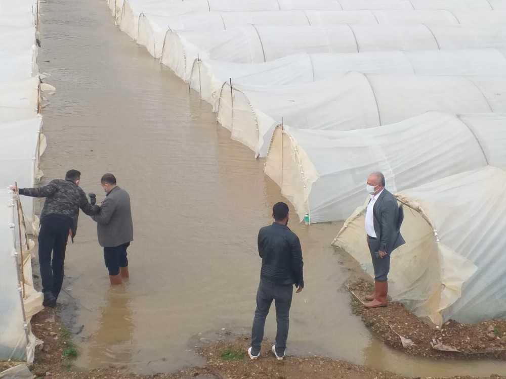 Antalya'da taşan dere ekili alanları su altında bıraktı