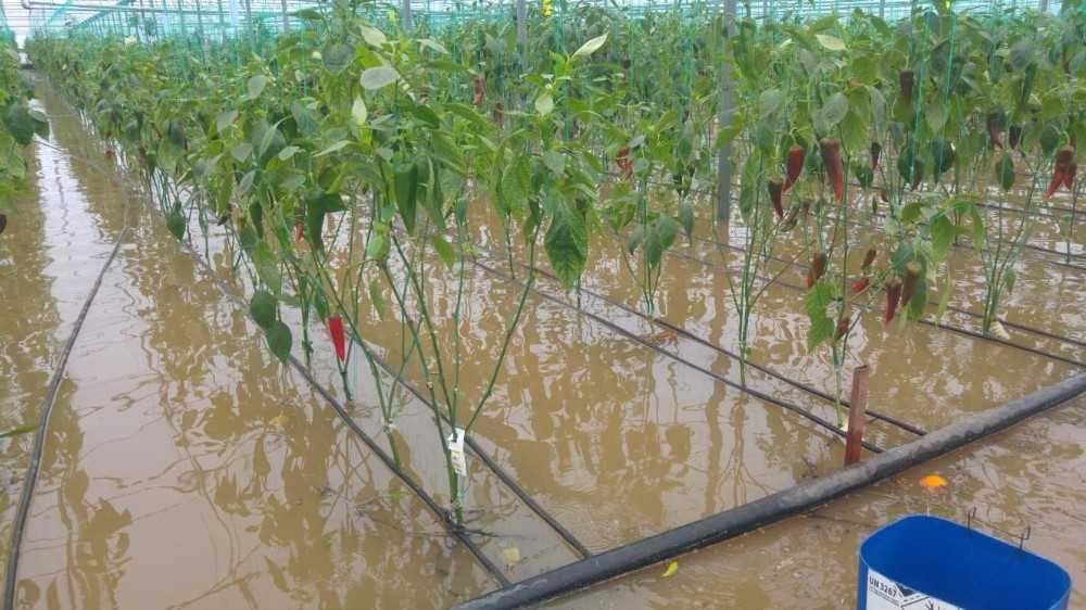 Kemer'de yağmur suları evleri bastı, araçlar yolda kaldı