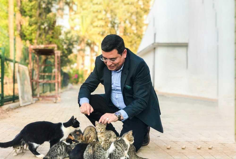 Kepez'de hayvan hastanesi açılacak
