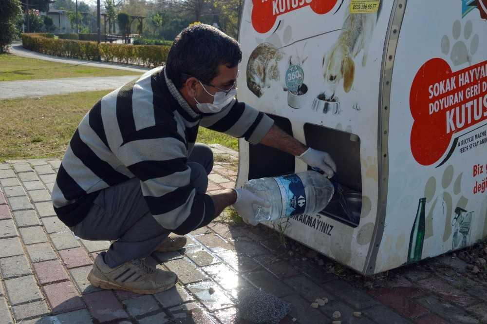Manavgat Belediyesi sokak hayvanlarını unutmadı