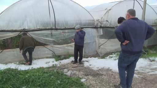 """Serası dolu nedeniyle zarar gören kadın çiftçinin tepkisi """"Patlıcan pahalı diyorlar, halimize baksınlar"""""""