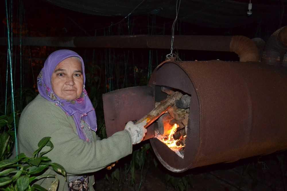 Zirai don uyarısı kadın üreticileri de uyutmadı