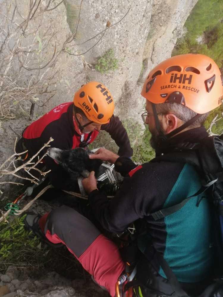 130 metrede 1 hafta mahsur kalan keçi için nefes kesen kurtarma operasyonu