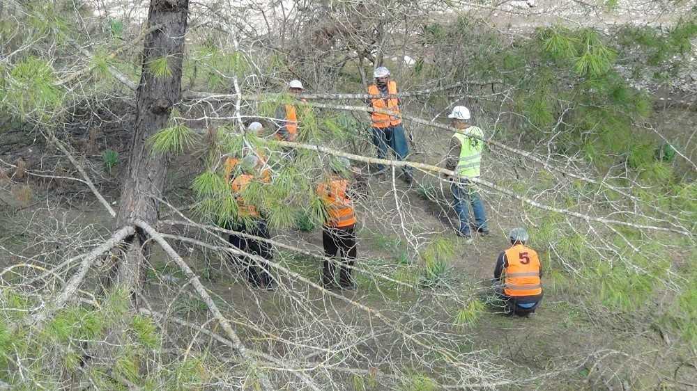 """Ağaç işleyen köylülerin uygulamalı """"mesleki yeterlilik"""" sınavı"""