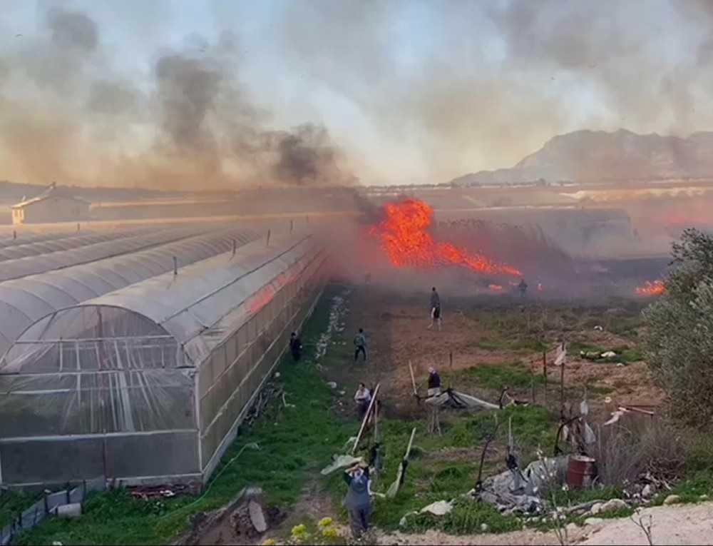 Büyükşehir, yangında serası zarar gören üreticiye destek verecek