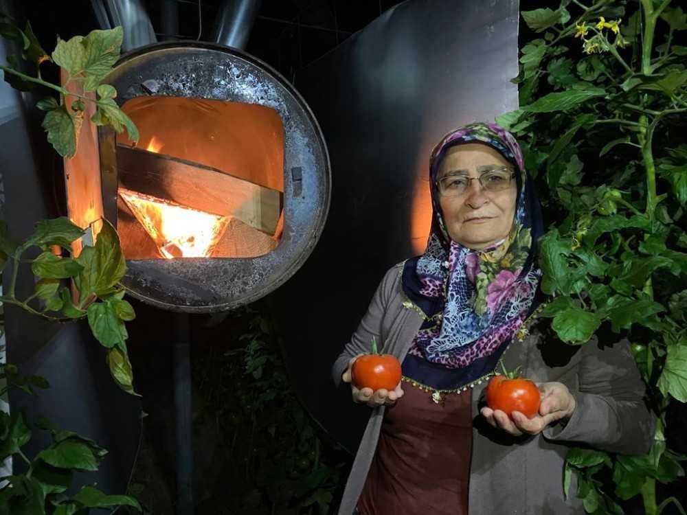 Kadın çiftçilerin zirai don nöbeti