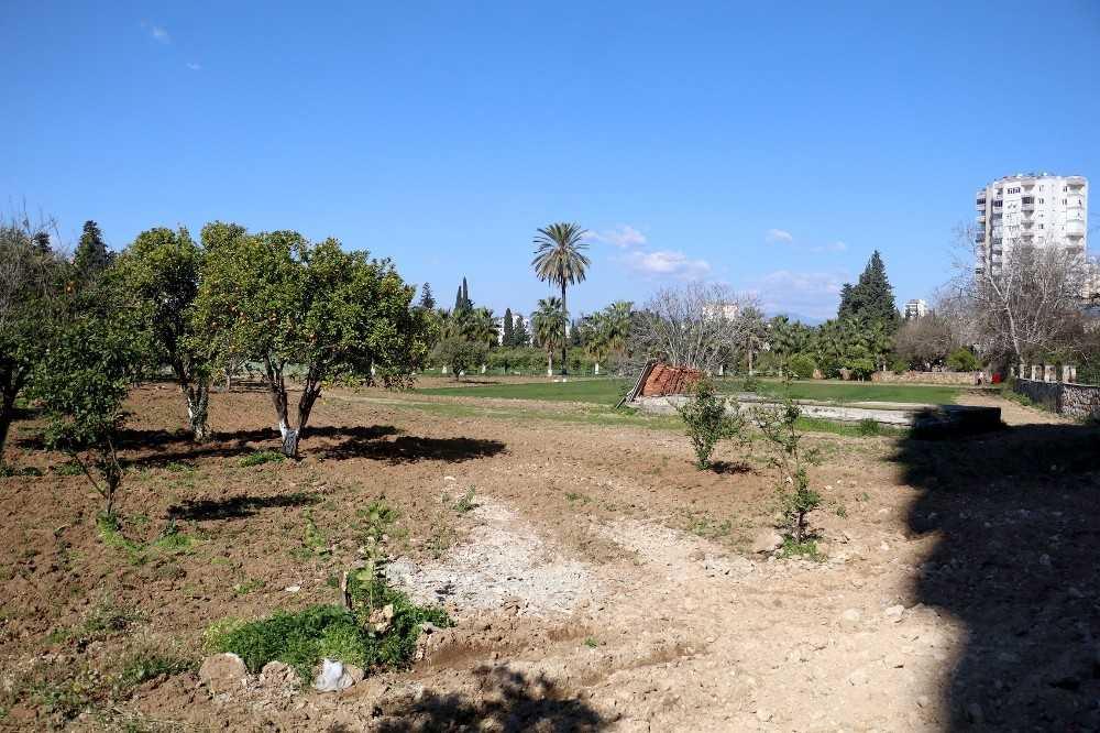 Portakal ağaçlarını kesip çim ektiler, uydu fotoğraflarıyla tespit edildiler