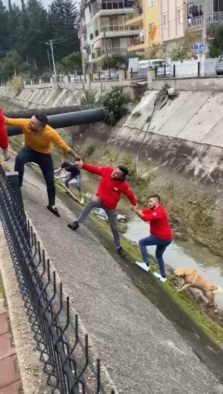 Su kanalına düşen köpek insan zinciriyle kurtarıldı