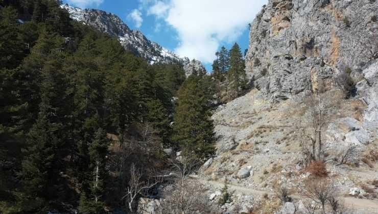 90 milyon yıllık fosillerin bulunduğu Alara-Geyik Dağı'nın milli park olması için başvuru yapıldı
