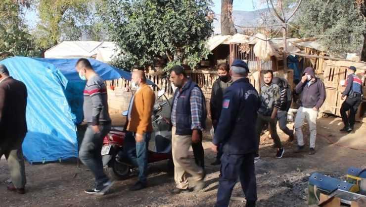 Antalya'da horoz dövüşü baskını: 22  gözaltı