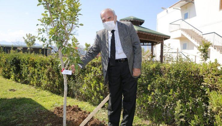 Antalya'da Yaşlılar Haftası'nda huzurevi sakinleri ağaç dikti