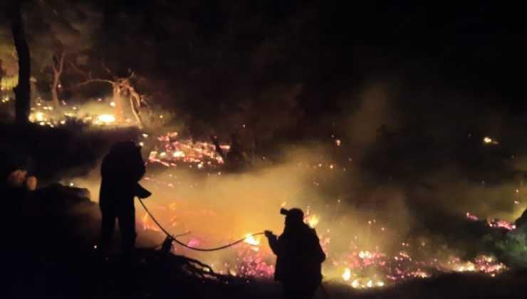 Antalya'daki yangında 1 hektar kızılçam ormanı zarar gördü