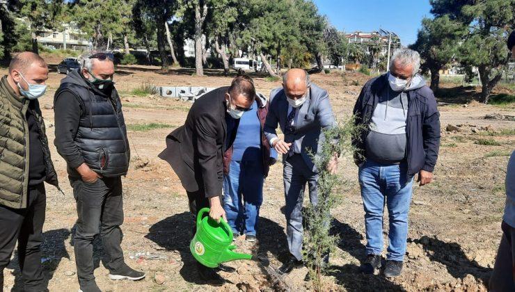 Gazeteciler 250 adet fidanı toprakla buluşturdu