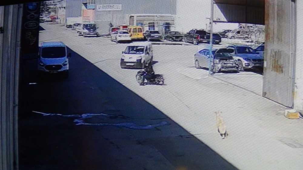 Köpekten korkan motosikletli otomobile çarptı: 1 yaralı