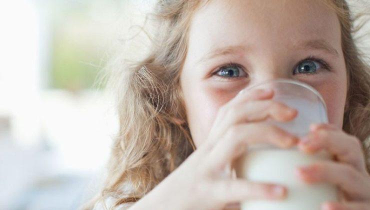 Süt akademisi başlıyor