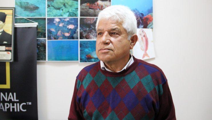Antalya'da balon balıkları oltalara 4'er 4'er takılıyor
