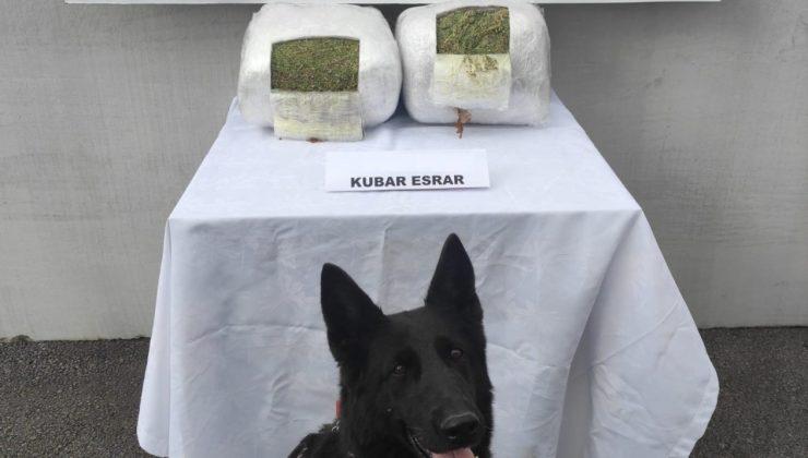 Jandarma yolcu valizinde 11 kilo esrar ele geçirdi