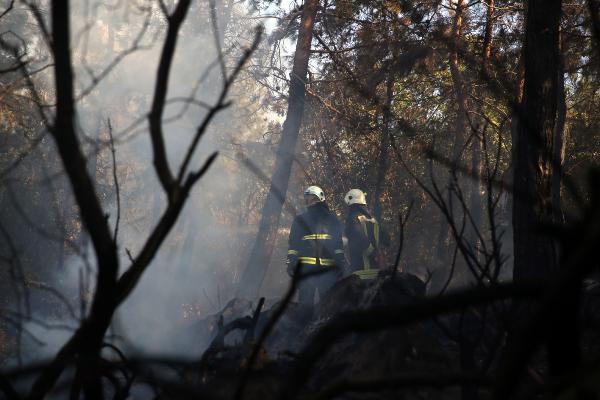 Alanya Kalesi yamacındaki ormanlık alanda çıkan yangın korkuttu