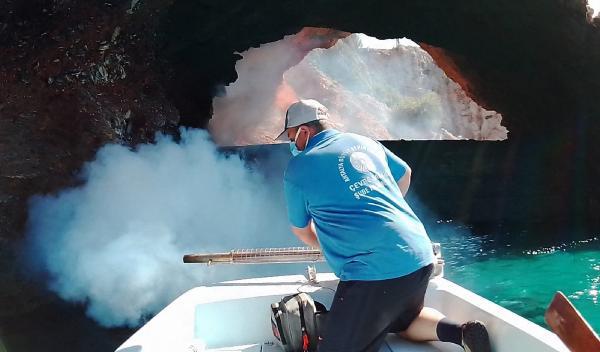 Alanya'da denizden sinekle mücadele