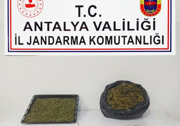 Alanya'da eve uyuşturucu baskını: 1 gözaltı