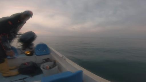 """Amatör balıkçı ağa takılan Caretta Caretta'yı """"gülüm, bir tanem"""" diyerek kurtardı"""